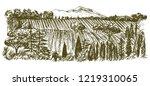 wide view of vineyard. vineyard ... | Shutterstock .eps vector #1219310065