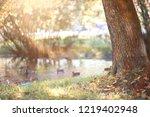 autumn rain in the park during... | Shutterstock . vector #1219402948