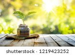 plant growing on organic...   Shutterstock . vector #1219423252