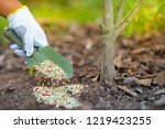 farmer giving fertilizer to... | Shutterstock . vector #1219423255