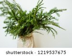 lush bouquet of spruce branches ... | Shutterstock . vector #1219537675