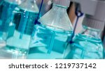 testing tube in laboratory | Shutterstock . vector #1219737142