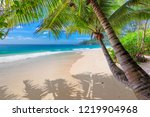 exotic sandy beach with palm... | Shutterstock . vector #1219904968