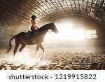majestic image of horse horse...   Shutterstock . vector #1219915822