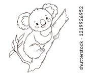 Cute Australian Koala Bear On A ...