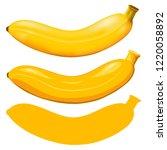 banana isolated. vector... | Shutterstock .eps vector #1220058892