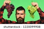 farmer shows his harvest....   Shutterstock . vector #1220099908