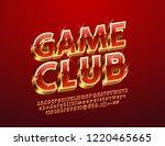 vector chic sparkling logo game ... | Shutterstock .eps vector #1220465665