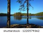 nature of sweden in autumn ... | Shutterstock . vector #1220579362