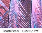 pink palm leaf pattern texture... | Shutterstock . vector #1220714695