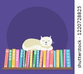 books on shelf with sleeping... | Shutterstock .eps vector #1220728825