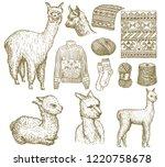 set of cute alpaca llamas....   Shutterstock .eps vector #1220758678