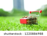 supermarket trolley with coins...   Shutterstock . vector #1220886988