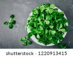 fresh green corn salad leaves... | Shutterstock . vector #1220913415
