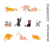 Stock vector set of funny cats in flat design variety breeds cats in different poses sitting standing 1221003922