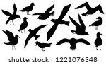Atlantic seabird, seagulls black silhouette set on white background. Sea, Ocean, Gull, bird in a vector flat style