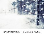 winter nature background  ... | Shutterstock . vector #1221117658