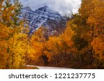 colorful yellow autumn in... | Shutterstock . vector #1221237775