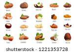 nut icon set. cartoon set of... | Shutterstock .eps vector #1221353728