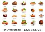 nut icon set. cartoon set of... | Shutterstock .eps vector #1221353728
