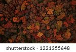aerial photo of fall leaves... | Shutterstock . vector #1221355648