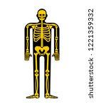 skeleton anatomy human.... | Shutterstock .eps vector #1221359332