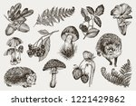 collection of highly detailed... | Shutterstock .eps vector #1221429862