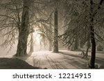Snowy landscape with lantern in the background - stock photo