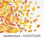 oak  maple  wild ash rowan... | Shutterstock .eps vector #1221571225