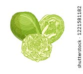 vector brussels sprouts. whole  ... | Shutterstock .eps vector #1221581182