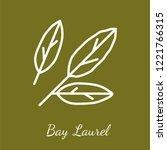 bay laurel leaves icon.... | Shutterstock .eps vector #1221766315
