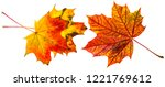 three autumn leaves close up | Shutterstock . vector #1221769612