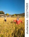 beautiful autumn rice field and ... | Shutterstock . vector #1221774505