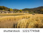 beautiful autumn rice field and ... | Shutterstock . vector #1221774568