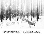 zebra in a snowy forest.... | Shutterstock . vector #1221856222