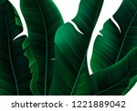 tropical realistic palm leaves. ... | Shutterstock .eps vector #1221889042