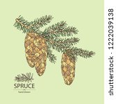 spruce  branch of spruce with... | Shutterstock .eps vector #1222039138
