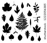leaves silhouettes set isolated ... | Shutterstock .eps vector #1222056385