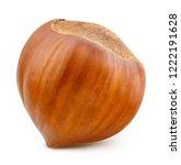 hazelnut isolated on white... | Shutterstock . vector #1222191628