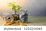 green plant growing out of... | Shutterstock . vector #1222214365