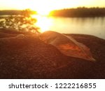dry leaf solitary in sunset   Shutterstock . vector #1222216855