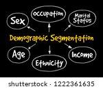 demographic segmentation mind...   Shutterstock .eps vector #1222361635