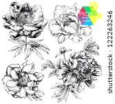 Stock vector engraved hand drawn illustrations of ornate peonies flower buds leaves and stems can be easily 122263246