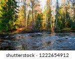 autumn forest river flow scene. ...   Shutterstock . vector #1222654912