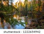 autumn forest river view.... | Shutterstock . vector #1222654942
