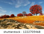 autumn landscape with red trees ... | Shutterstock . vector #1222705468