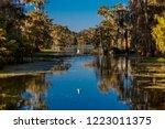 OCTOBER 14, 2018 - Lafayette, Louisiana, USA - White Egret flies in Cajun Swamp & Lake Martin, near Breaux Bridge and Lafayette Louisiana