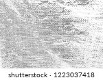 abstract background. monochrome ... | Shutterstock . vector #1223037418