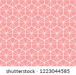 the geometric pattern with... | Shutterstock .eps vector #1223044585