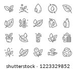 plants line icons. set of mint... | Shutterstock .eps vector #1223329852